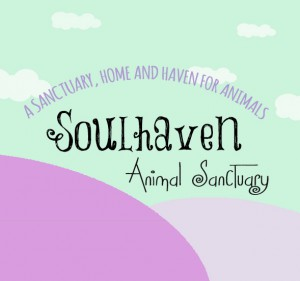 SoulHaven Animal sanctuary is proudly supported by The Green Room