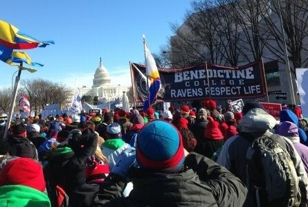 Benedictine College's 400-strong group aimed toward the Capitol Building.