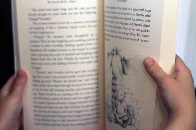 Inside Begin - The Growly Books