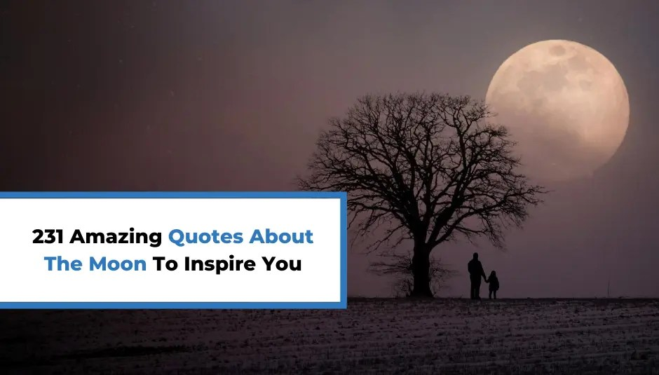 231 Amazing Quotes About The Moon To Inspire You