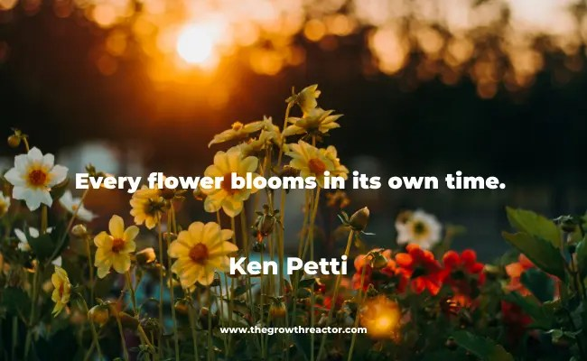 quotes about blooming like a flower