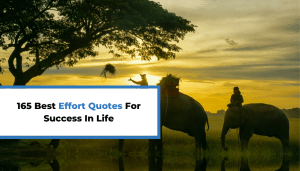 165 Best Effort Quotes For More Success In Life