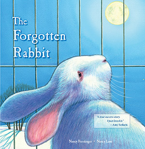 The Forgotten Rabbit