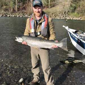 Steelheader communications director Aaron Sewall of Portland with a nice Clackamas River steelhead from January 24th