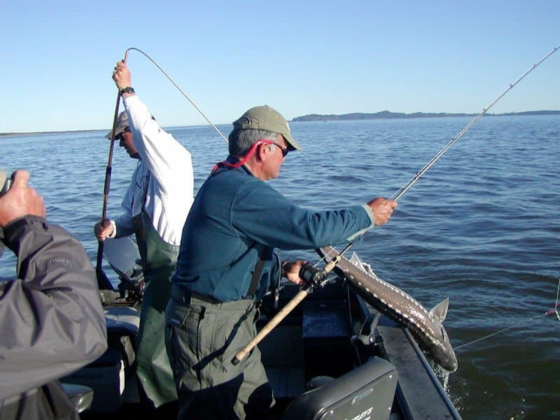 Columbia River Fishing Report and Forecast June 7th, 2019