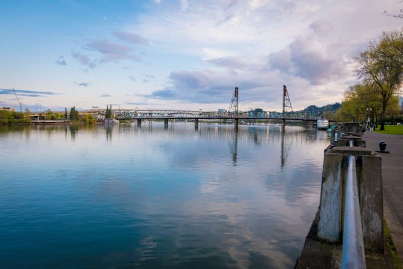 Willamette River Fishing Report December 13th, 2019