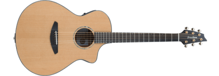 Best Fingerstyle Guitar Under $1,000 - Breedlove Solo Concert