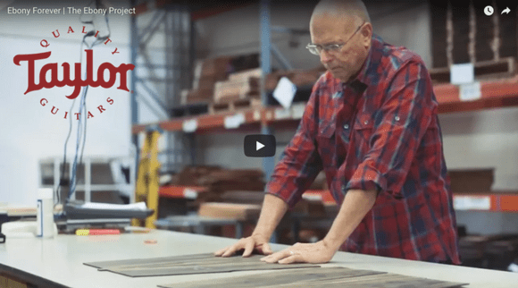 Taylor Guitars Releases 'The Ebony Project': Documentary of Taylor's Responsible Ebony Wood Sourcing