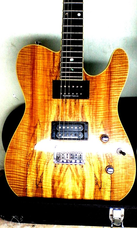seymour duncan pickups on spalted maple tele