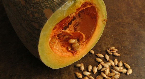 pumpkin and seed