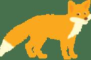1 fox