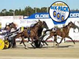 australian harness racing