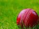 Reduced Cricket Bat