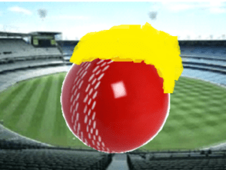 Nine's Summer of Cricket