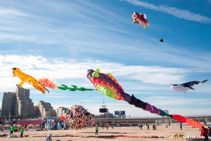 International Kite Festival Scheveningen