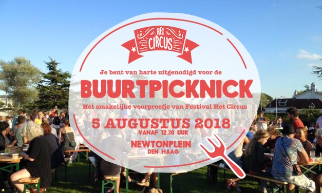 Biggest Neighborhood Picnic in Europe comes to Newtonplein The Hague