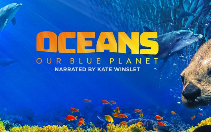 Review of Oceans: Our Blue Planet at the Omniversum