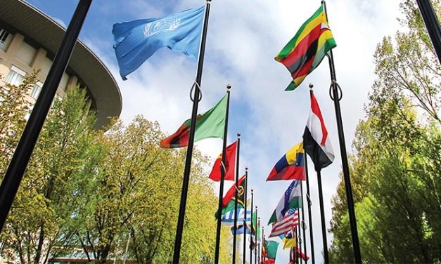 New website for The Hague International Centre