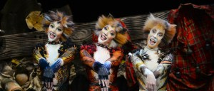 CATS: The West End comes to Rotterdam - plus special ticket offer for THO readers! @ New Luxor Theatre Rotterdam