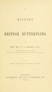Rev F. O. Morris's British Butterflies - The Hall of Einar