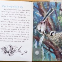 The First Ladybird Book of British Birds - #5 The Long-tailed Tit
