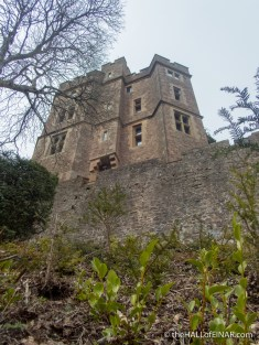 Dunster Castle - the Hall of Einar - photograph (c) David Bailey (not the)