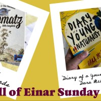 The Hall of Einar – Sunday Review #4