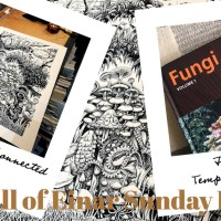 The Hall of Einar Sunday Review #7