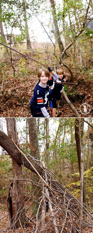 fun_in_the_woods