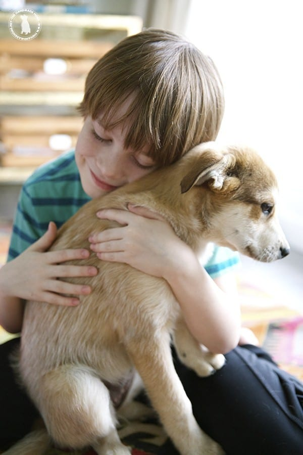 puppy_and_boy