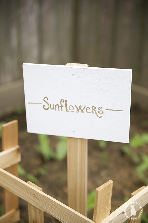 garden_sunflowers_sign
