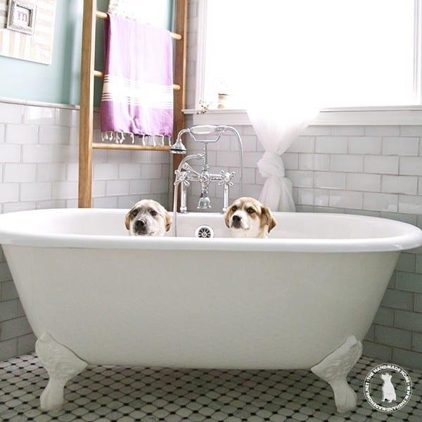 bathroom_works_hard