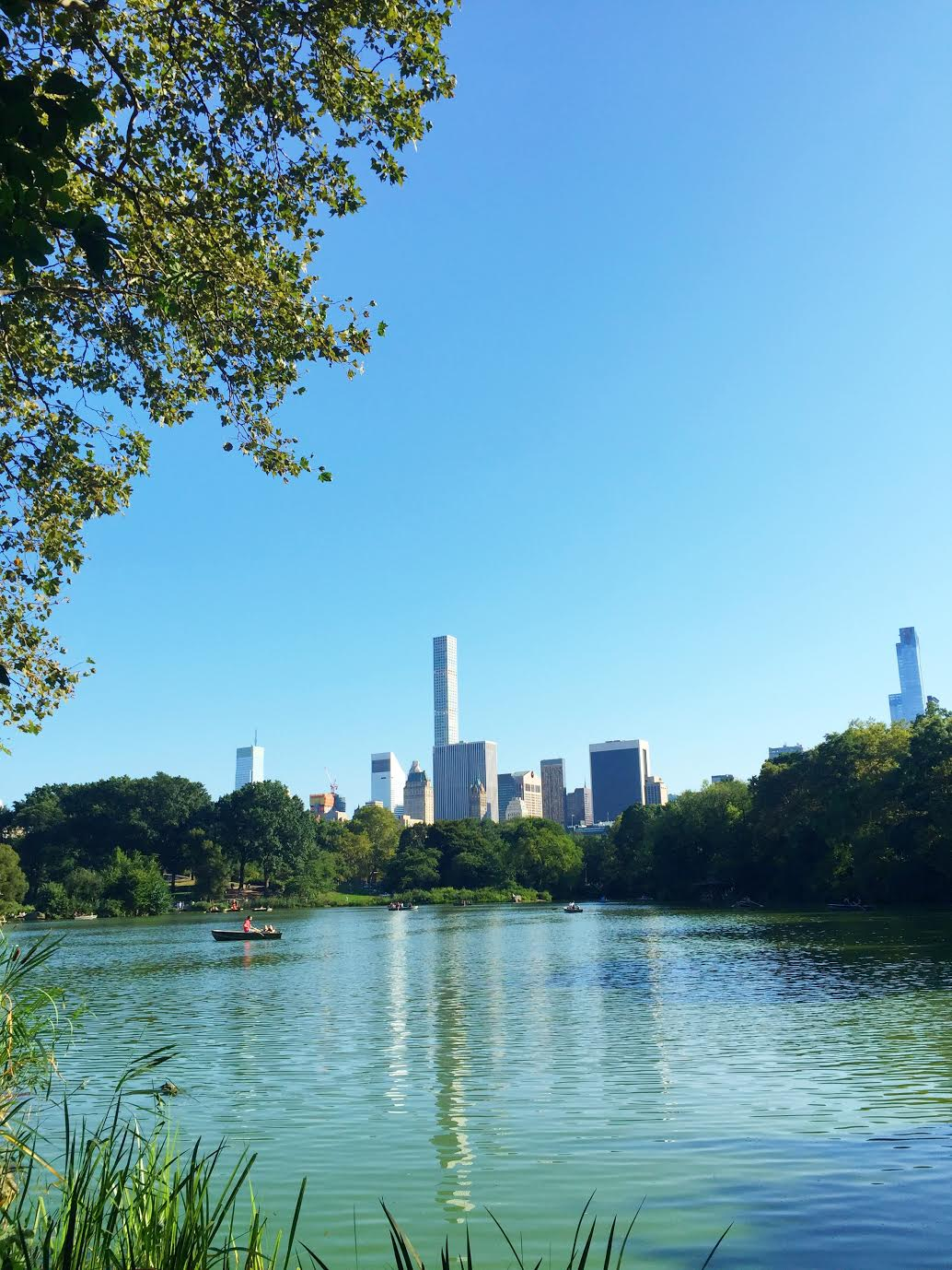 Things to see in New York City - central park