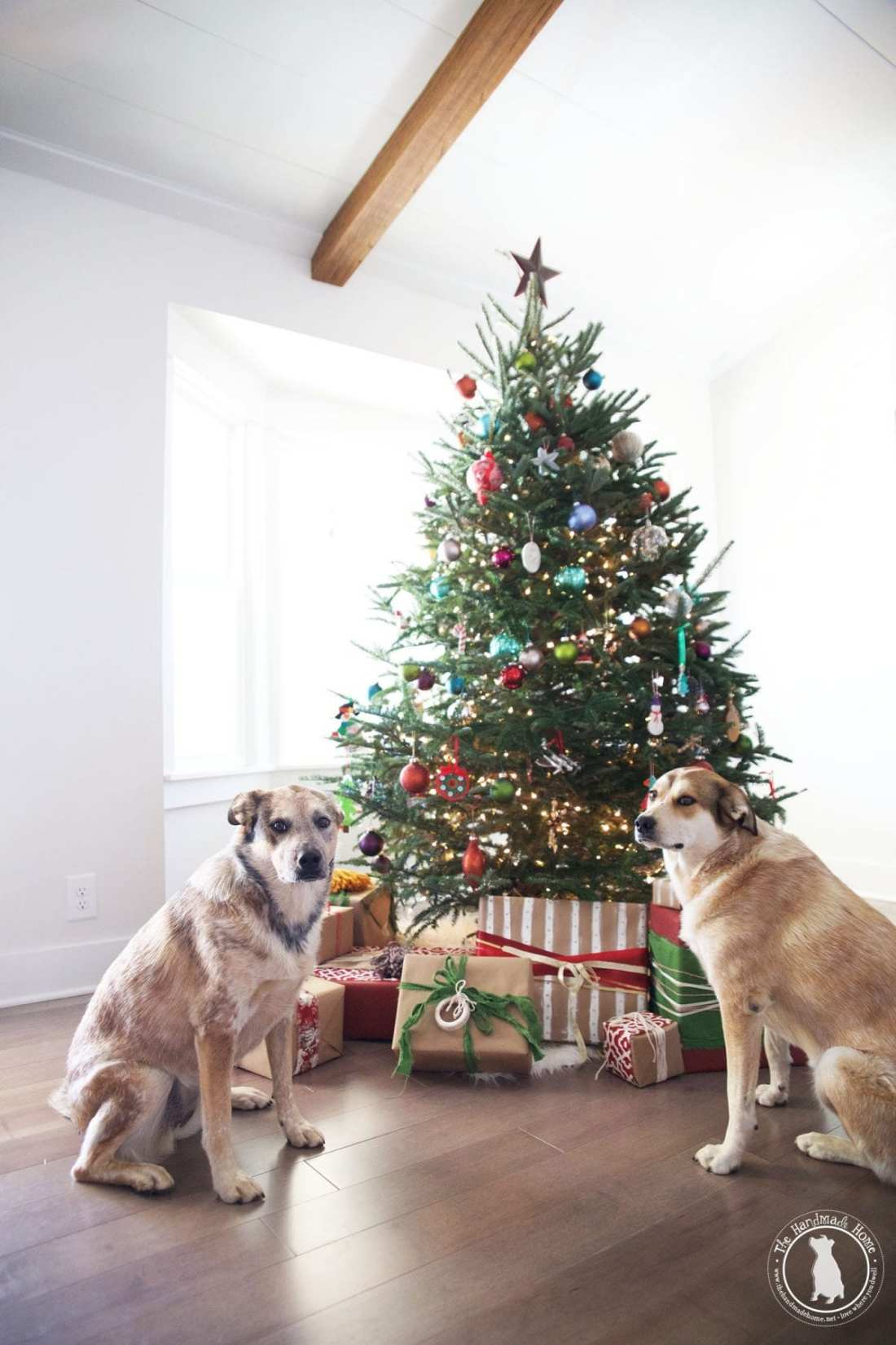 christmas_rigby_and_fitz