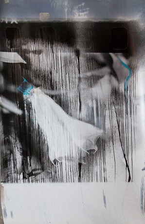 Michael Pointer (Wichita, KS) The Difficult Occlusion of Night and Daturas – Number 4 Gelatin silver monotype with acrylic