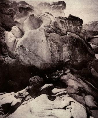 Amanda Tomlin (Novato, CA) Grandfather and the Snake Copperplate photogravure