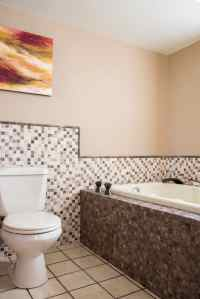 Three Ways to Add a Shower to a Tub - The Handyman's Daughter