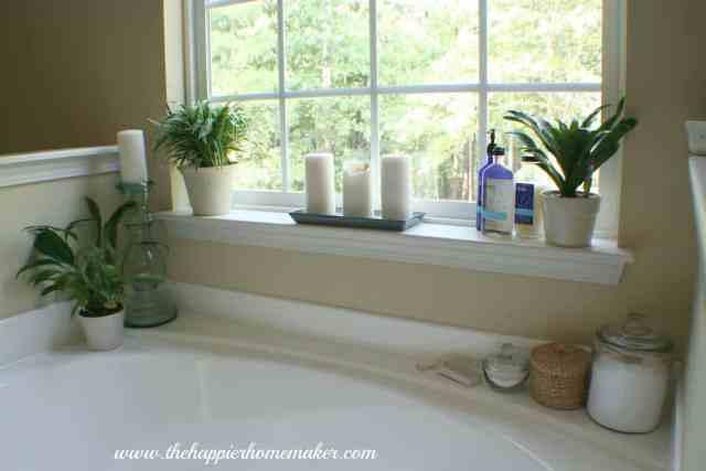 Garden Tub Decor Ideas