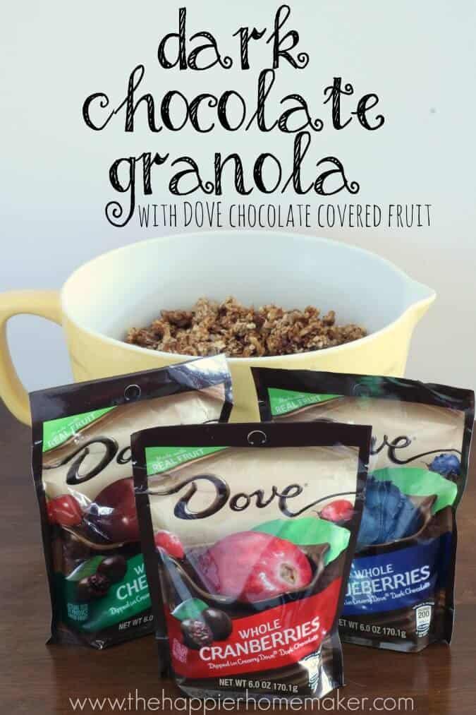 Gourmet Dark Chocolate Granola Recipe Dovefruit The