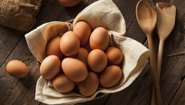 10 Breeds of Chicken That Will Lay Lots of Eggs for You Blog Cover