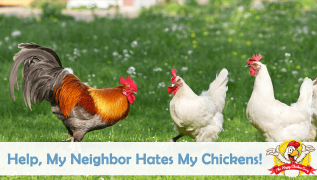 Help My Neighbor Hates My Chickens Blog Cover