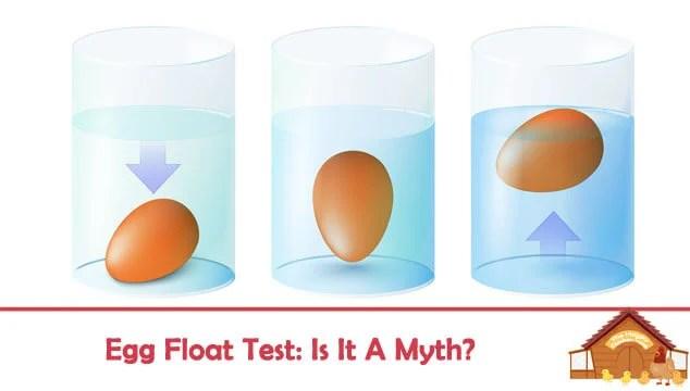 Egg Float Test Blog Cover