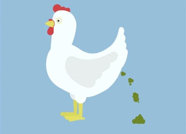 Chicken Wormers