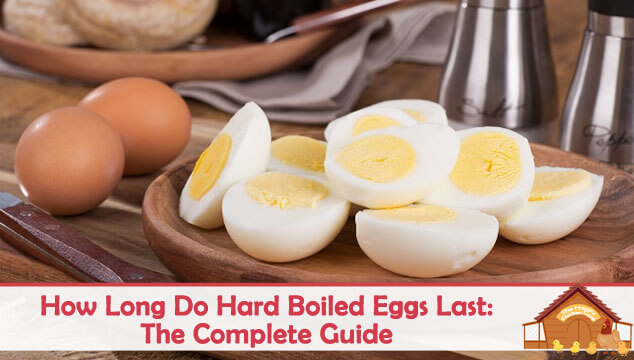 How Long Do Hard Boiled Eggs Last The Complete Guide Blog Cover