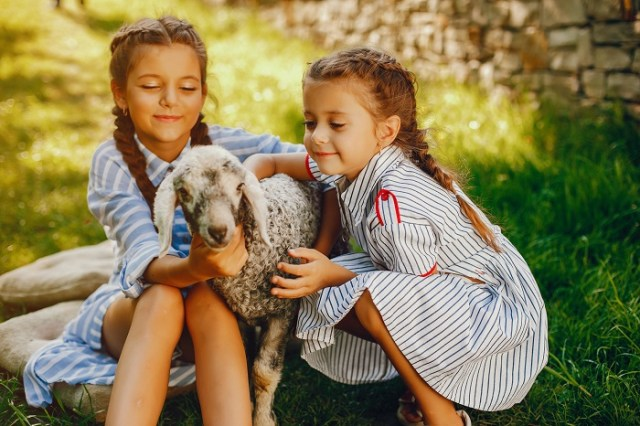 Keeping Goats As Pets