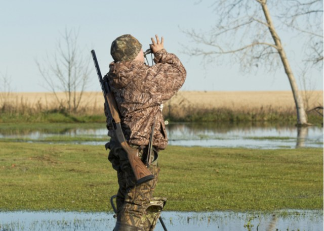 call duck breed hunting