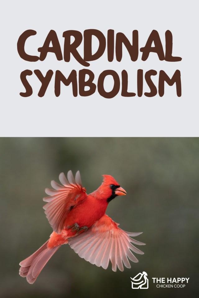 cardinal symbolism