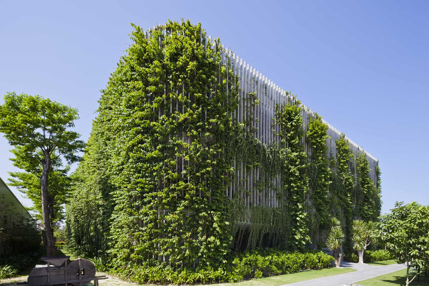 outdoor greenery on building