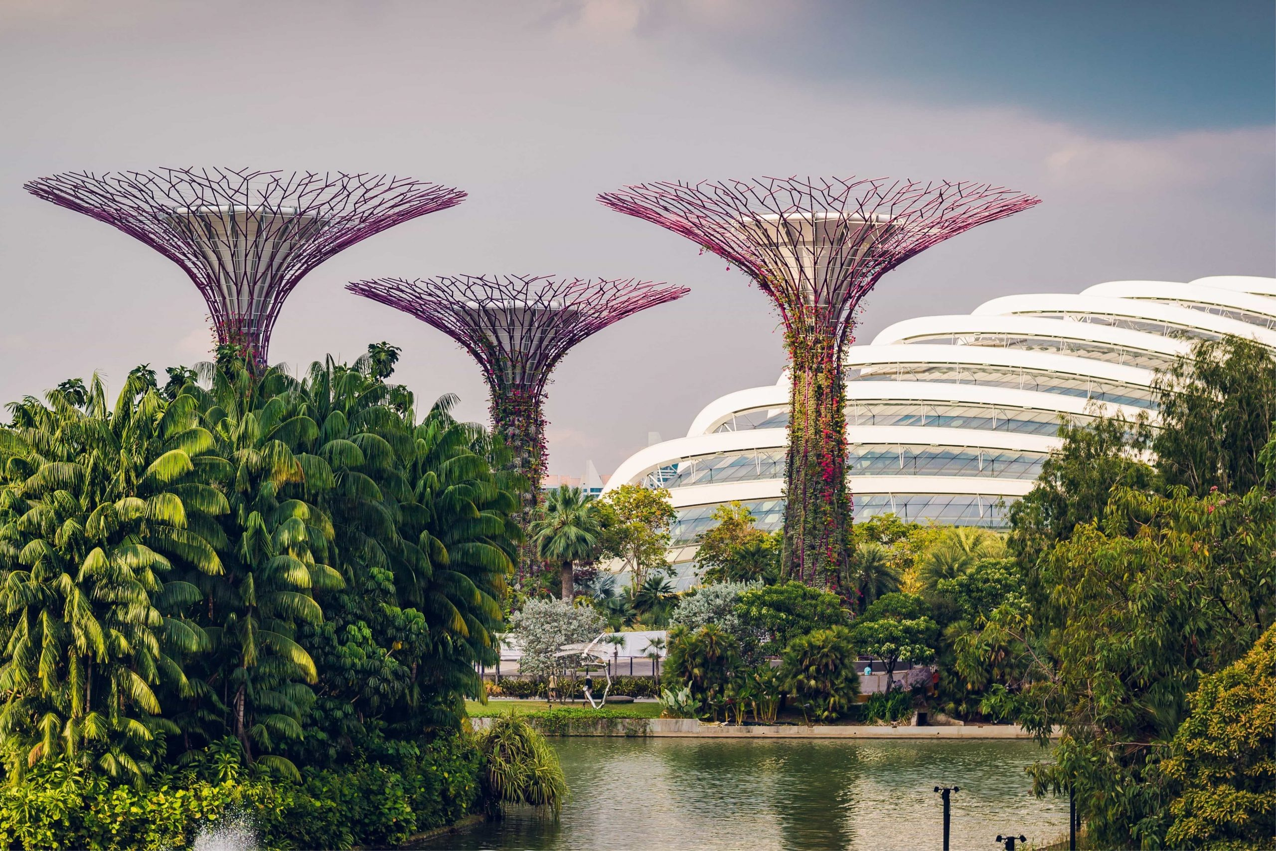gardens by the bay singapore green