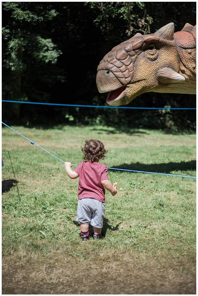 child looking at a dinosaur at jurassic kingdom manchester